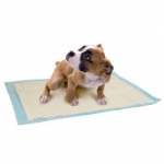 TAPIS ABSORBANTS CHIOTS  X10